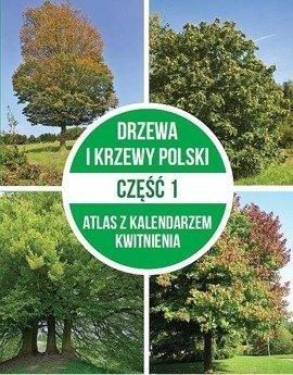 Drzewa i krzewy Polski cz.1